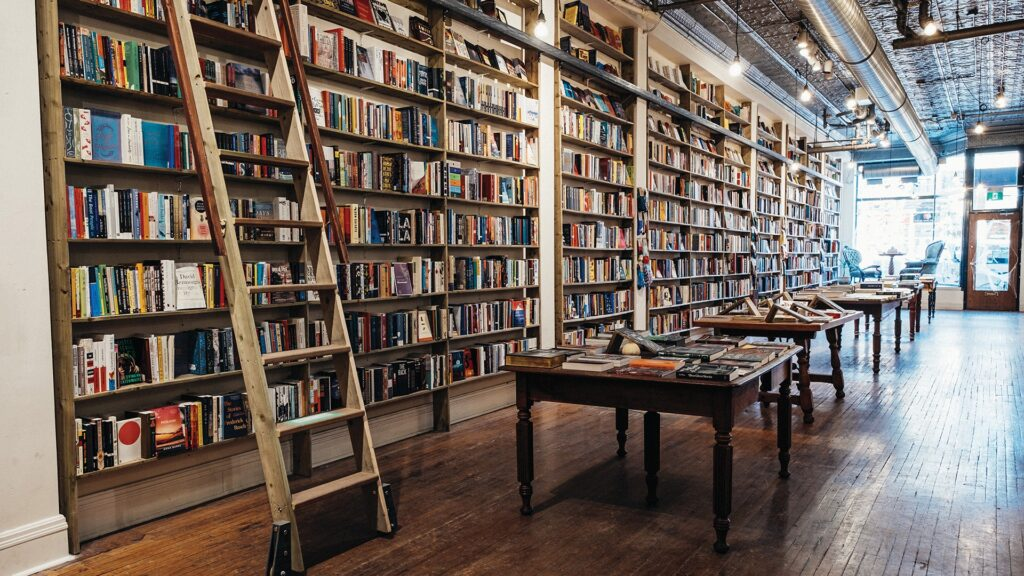 Photo taken from the back of The Next Page bookstore, looking along a line of bookshelves with a ladder toward a window