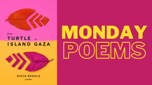 Feature image for Monday Poems series featuring the cover image for From Turtle Island to Gaza by David Groulx